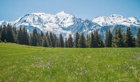 Cadre montagneux ou les emplacements sont délimités de façon naturelle